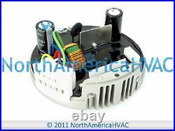 OEM Rheem Ruud Weather King Furnace 1/3 HP Blower Motor Module for 51-101879-05